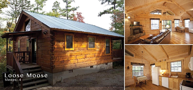 Fine Tellico Plains Cabin Rental Cherohala Download Free Architecture Designs Griteanizatbritishbridgeorg